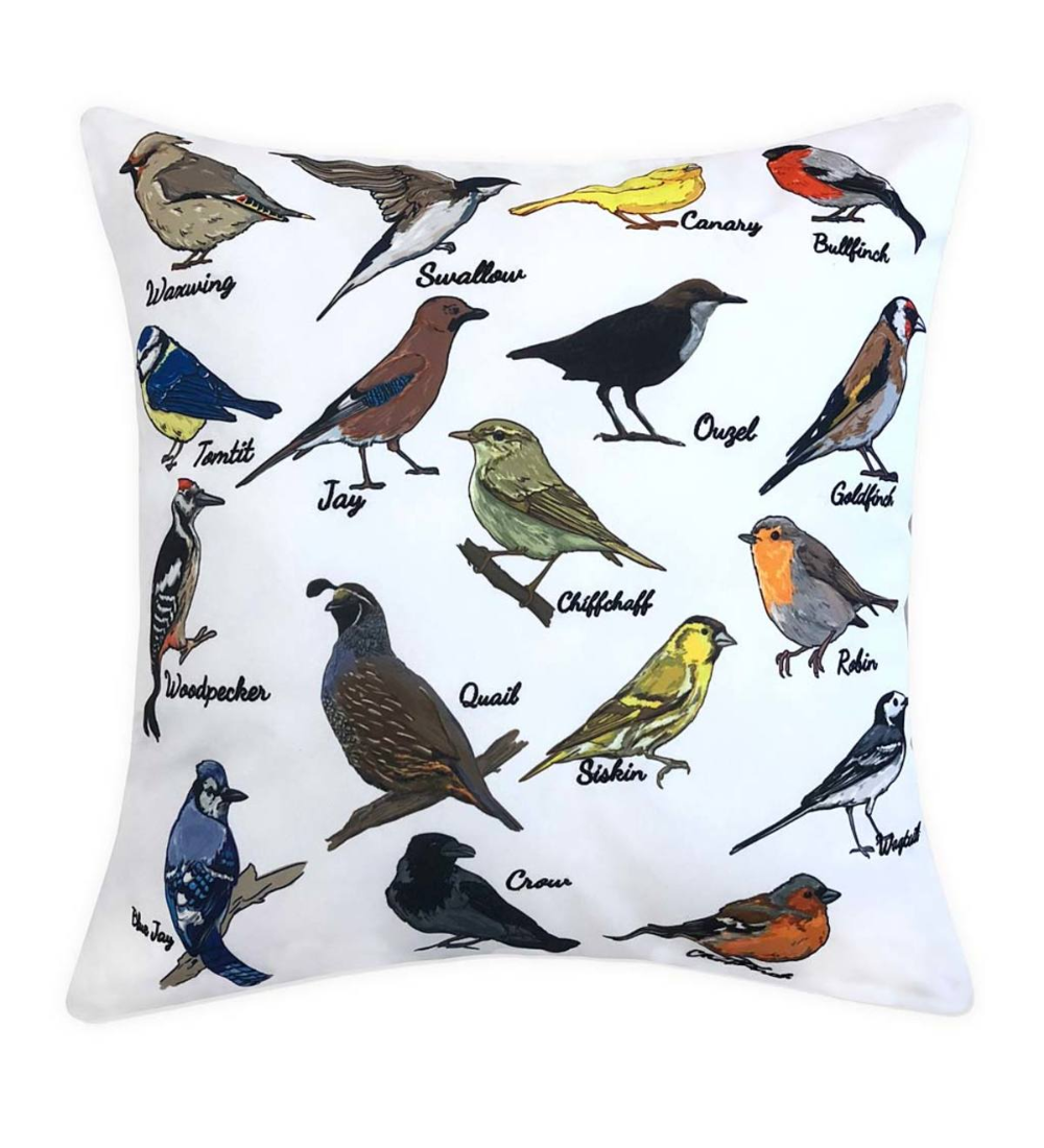 The Indoor Outdoor Bird Watcher Throw Pillow Adds Comfort Color And Style To Your Outdoor Furniture It S Educational T Throw Pillows Pillows Colorful Pillows