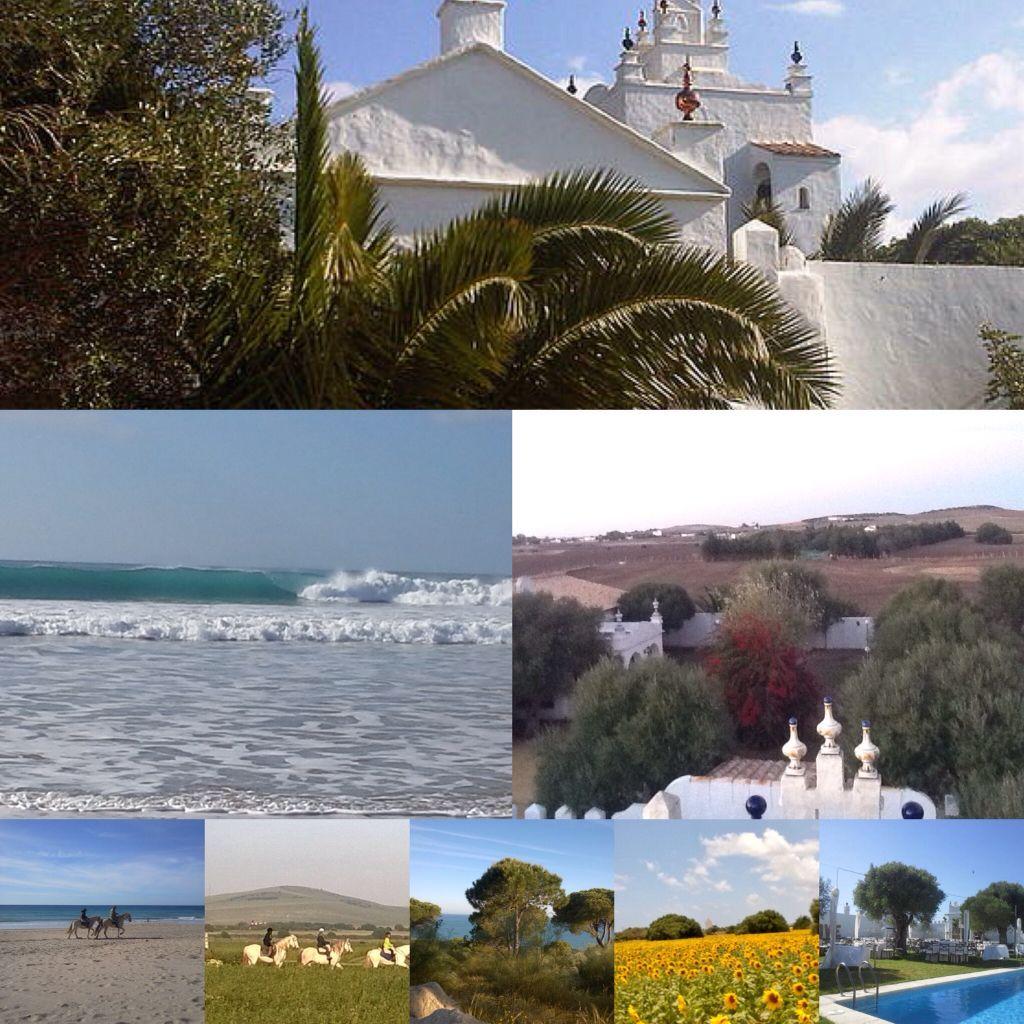 Hollidays..Andalucia...www.cortijomangueta.com