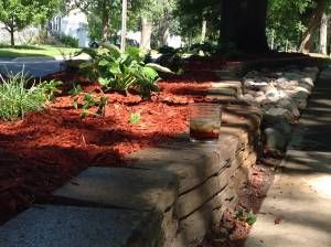 Landscaping is not for the weak. #landscaping #planting #gardening
