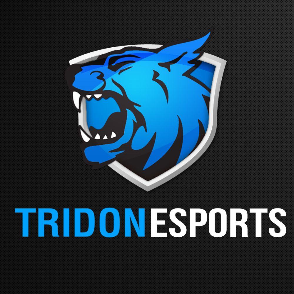 Gaming and eSports logos | Logos | Pinterest | Esports logo and Logos