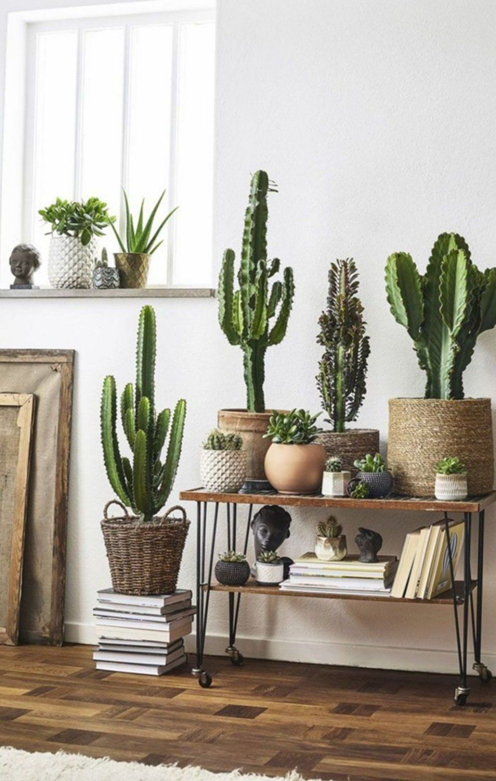 30 Best Creative Cactus Decorations To Beautify Your Home Beautify Cactus Creative Decorations Home Homedecoration Home In 2020 Cactus Decor Decor Cactus Plants