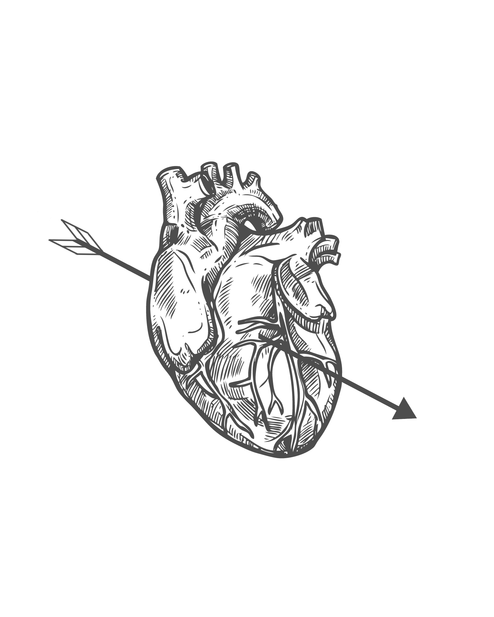 Heart Wall Art Printable Anatomical Heart Art Black And White Prints Heart Wall Art