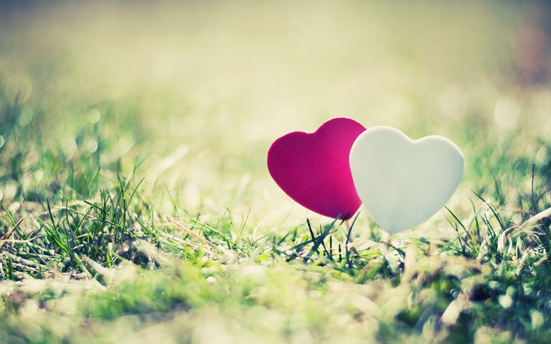 Resultado de imagen de enamorados