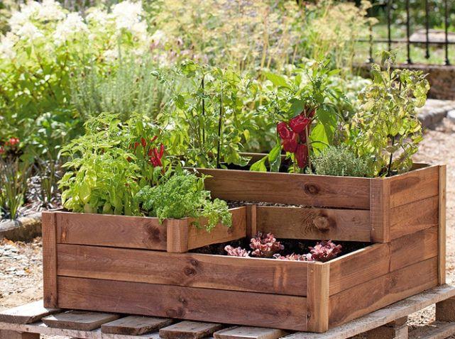 truffautespacepotager potager pinterest jardin de. Black Bedroom Furniture Sets. Home Design Ideas