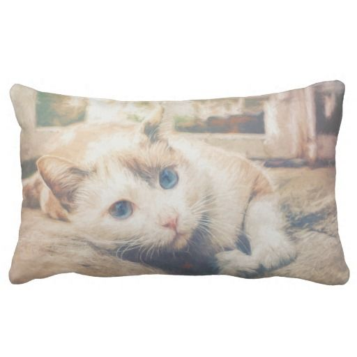 Cute Cat Cushion. A lovely addition to your home decor or as a gift for any cat lovers you know.