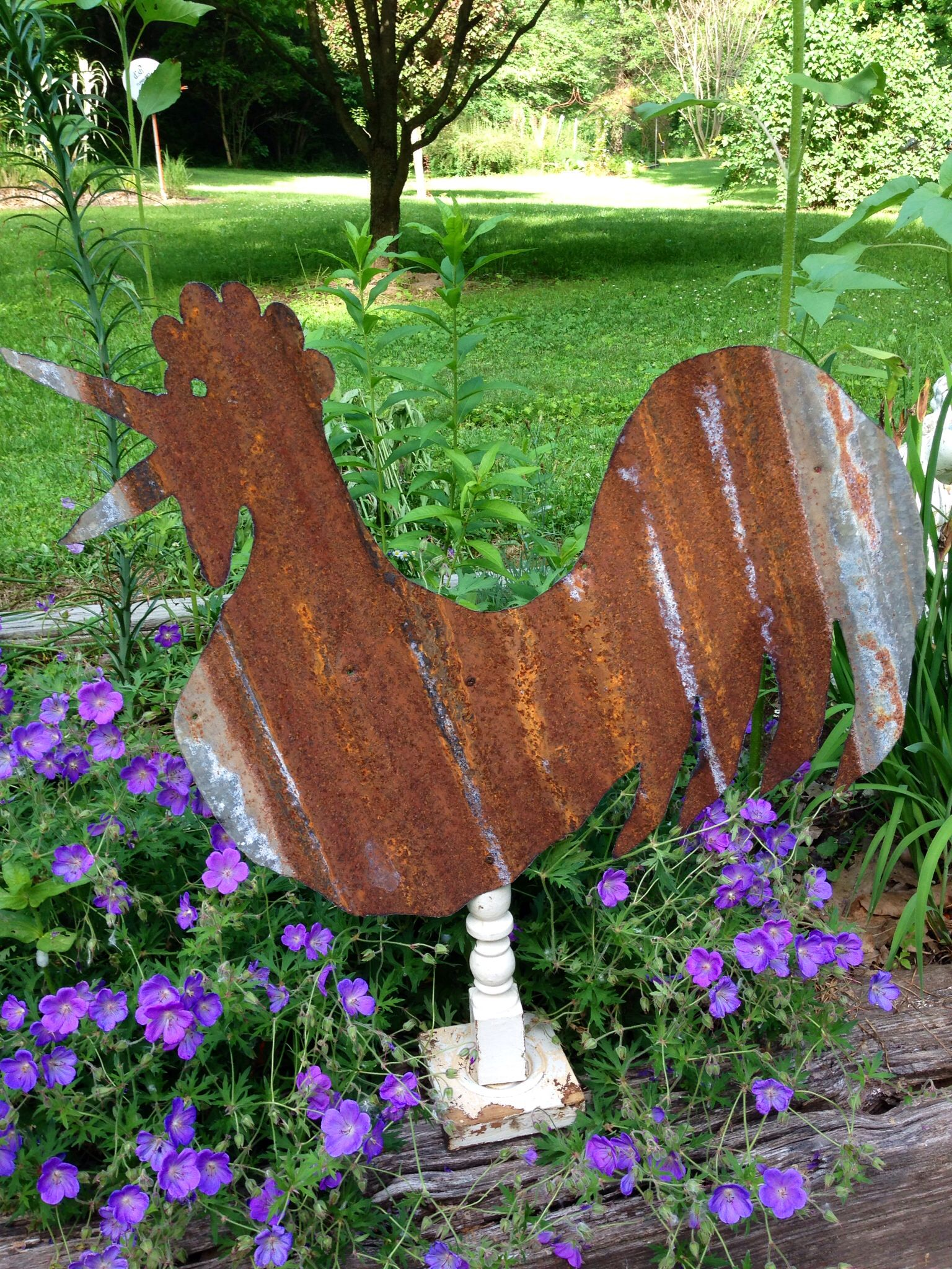 French Rooster In Old Corrugated Tin Garden Art