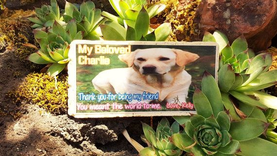garden plaque stone grave marker personalized pet memorial sympathy