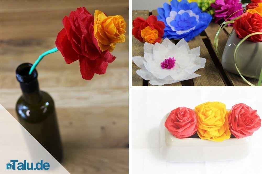 Blumen aus Krepppapier basteln u2013 Bastelanleitungen DIY-Ideen - blumen basteln