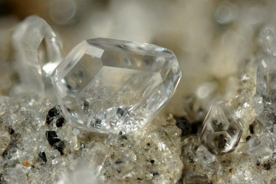 Fluorapatite. Cavradi, Tujetsch, Graubünden, Schweiz Taille=3 mm Copyright Stephan Wolfsried