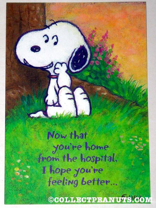 Snoopy How Are You With Images Snoopy Dance Snoopy Cartoon