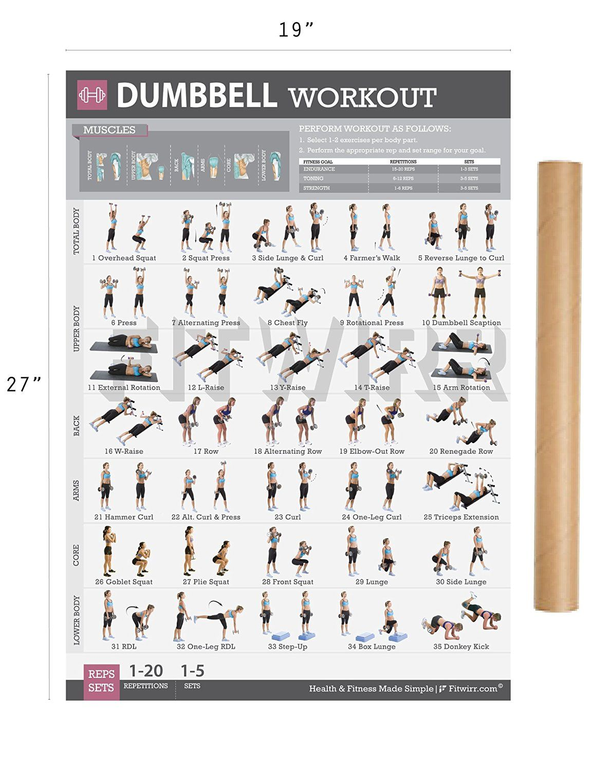 Fitwirr dumbbell workout exercise poster home gym