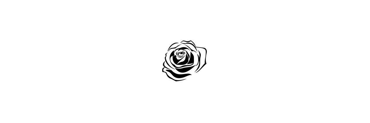 White Roses Tumblr Header