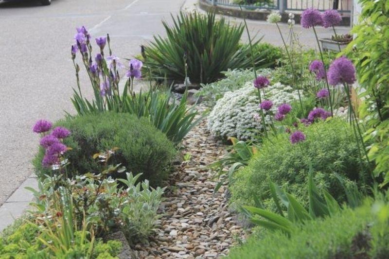 Schmale Beete effektvoll bepflanzen - Mein schöner Garten