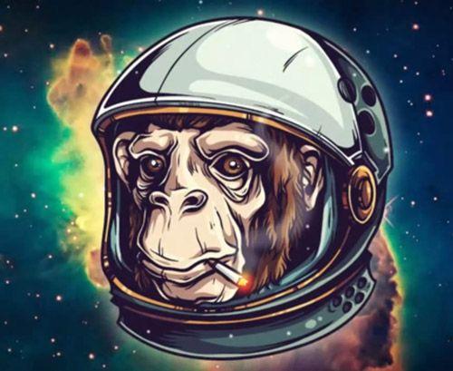 Create a Space Chimp Illustration Tutorial Graphic Design