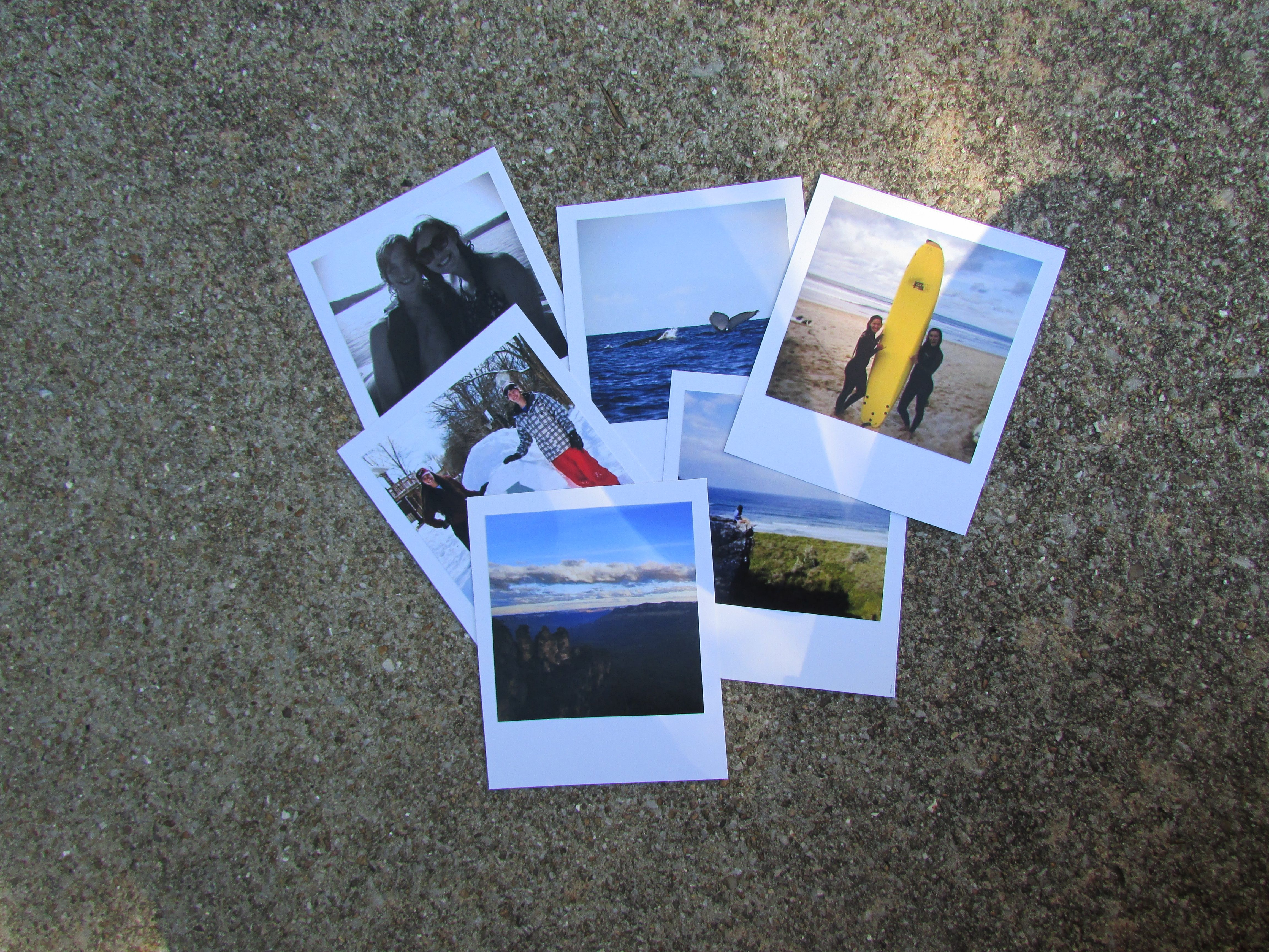 diy polaroids and floral hanging the misc haven blog pinterest
