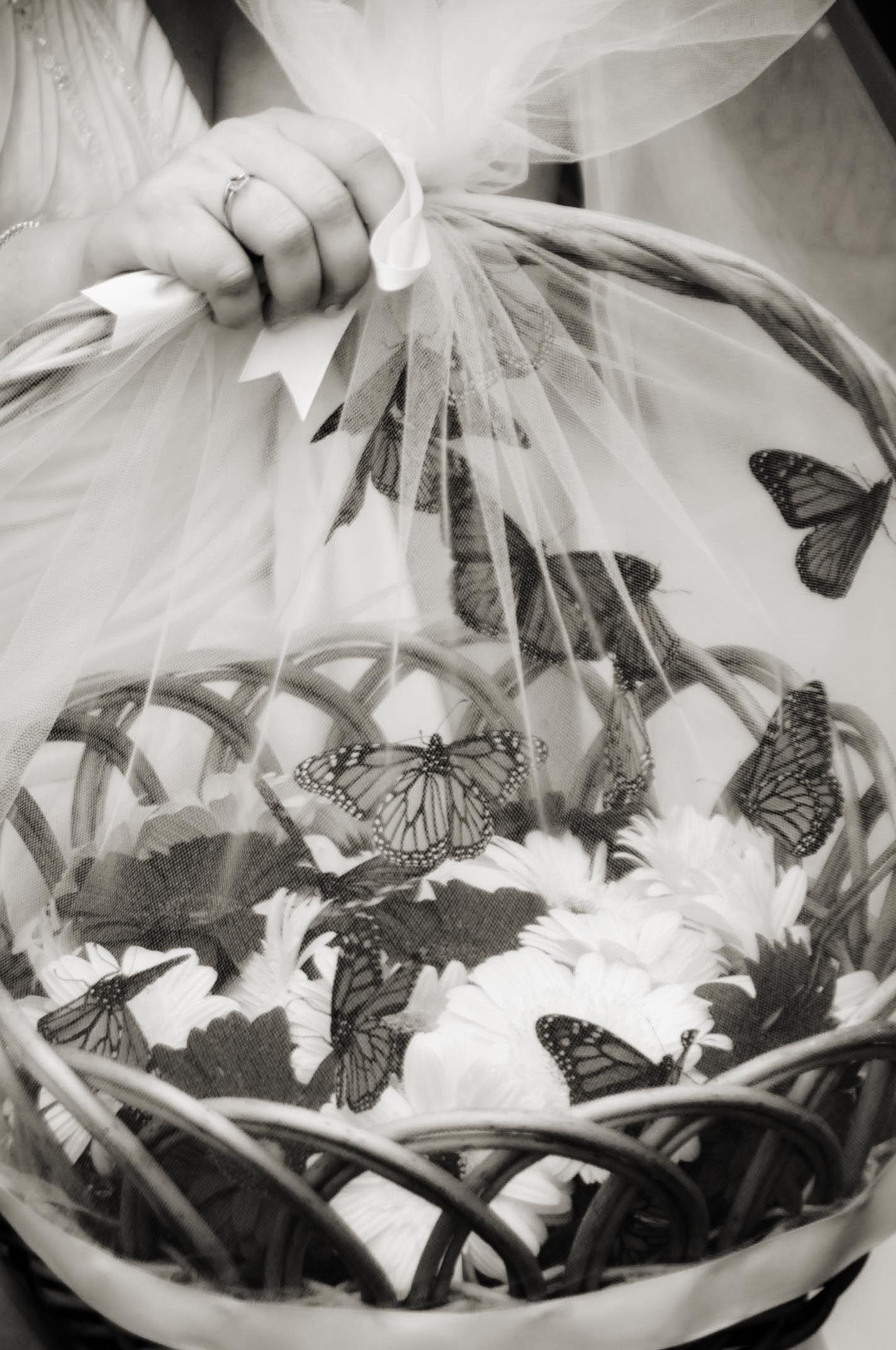 Butterfly Release wedding Garden theme wedding