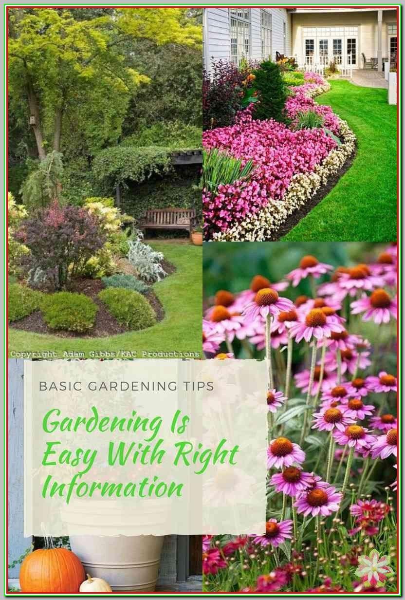 c1b462f71270ad77c3a039d66da6f5bd - What Are The Basic Gardening Techniques