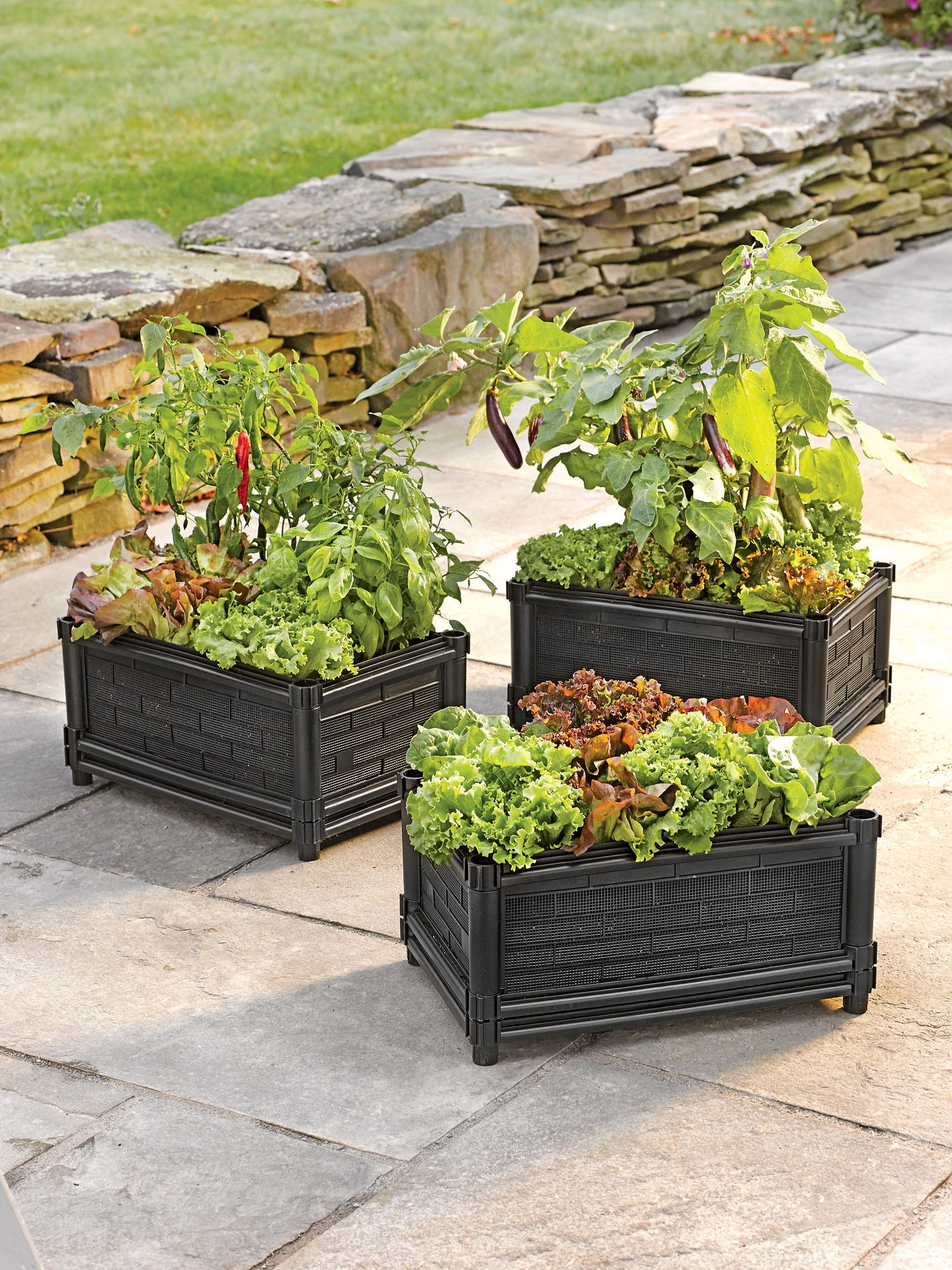 Veg Grow Box For Balcony, Stoop Or Patio Gardening -