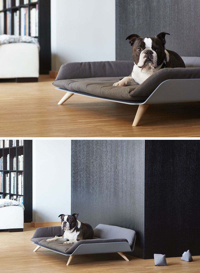 the letto daybed is a modern dog bed with plenty of style