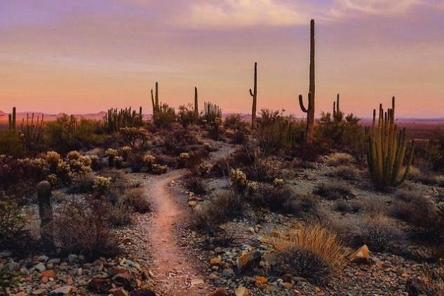 How to Save Money when you dont have much to save Get yourself saving money in no time with these practical tips At the Desert Botanical Garden in plants suited to the ar...