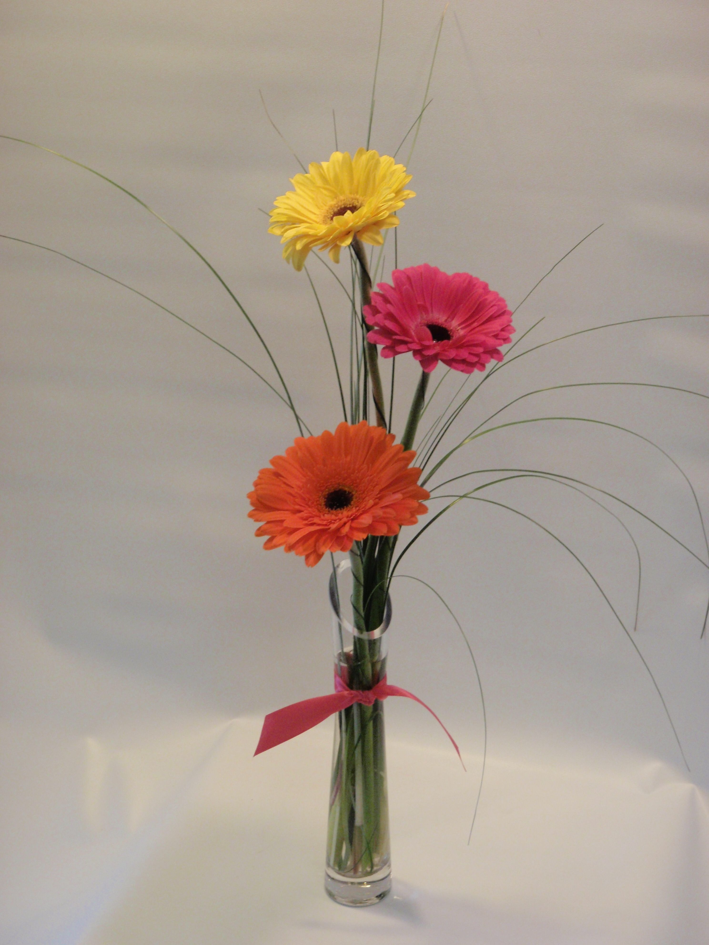 Bright colored gerbera daisies in a bud vase with bear grass bright colored gerbera daisies in a bud vase with bear grass reviewsmspy