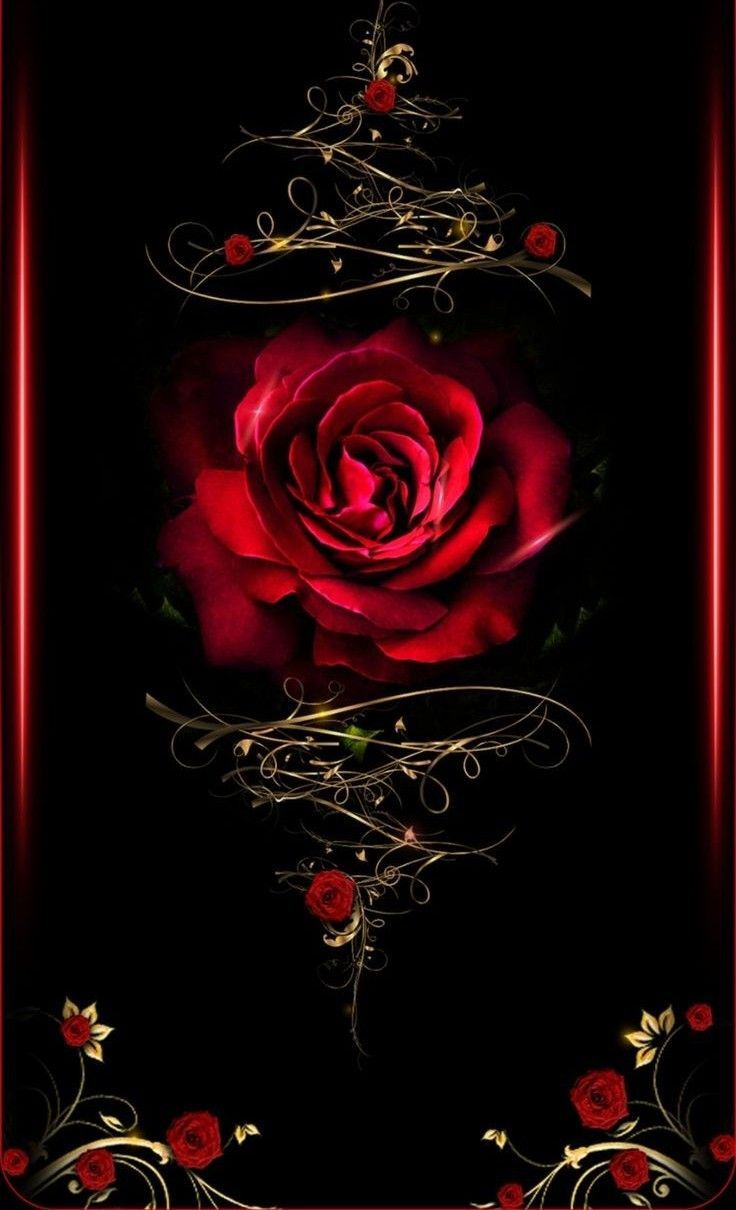Wallpaper By Artist Unknown Gothic Wallpaper Red Roses Wallpaper Beautiful Flowers Wallpapers