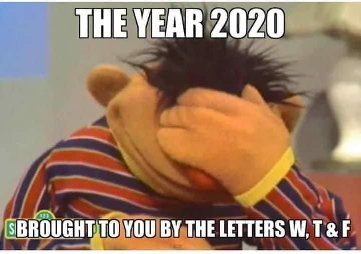 The Year 2020 Has Brought To You By The Letters W T F Sesame Street Hilarious Sesame Street Memes