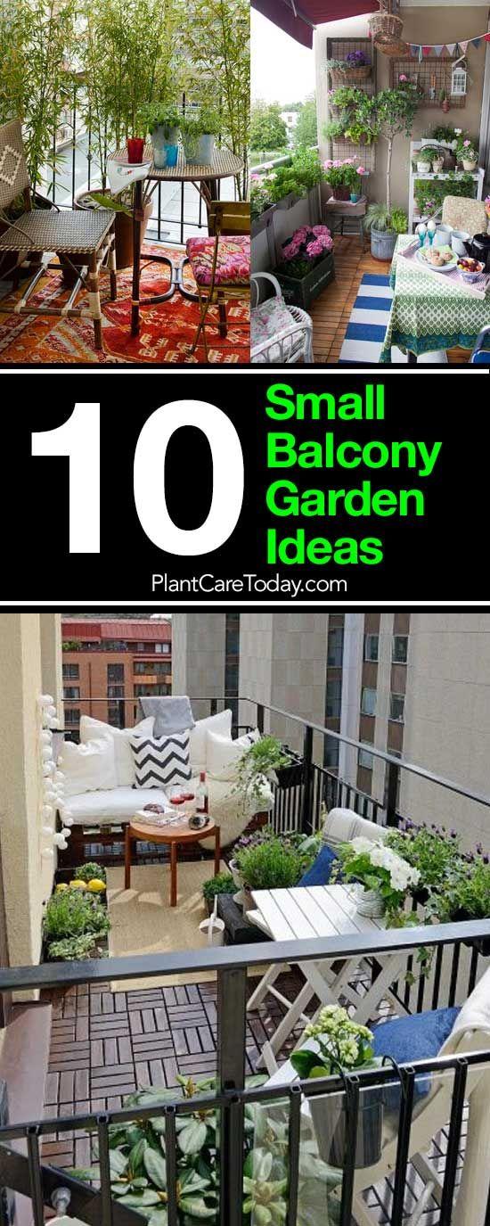 Photo of 10 kleine Balkongarten-Ideen: Tipps, wie Sie Ihren Balkon verschönern können