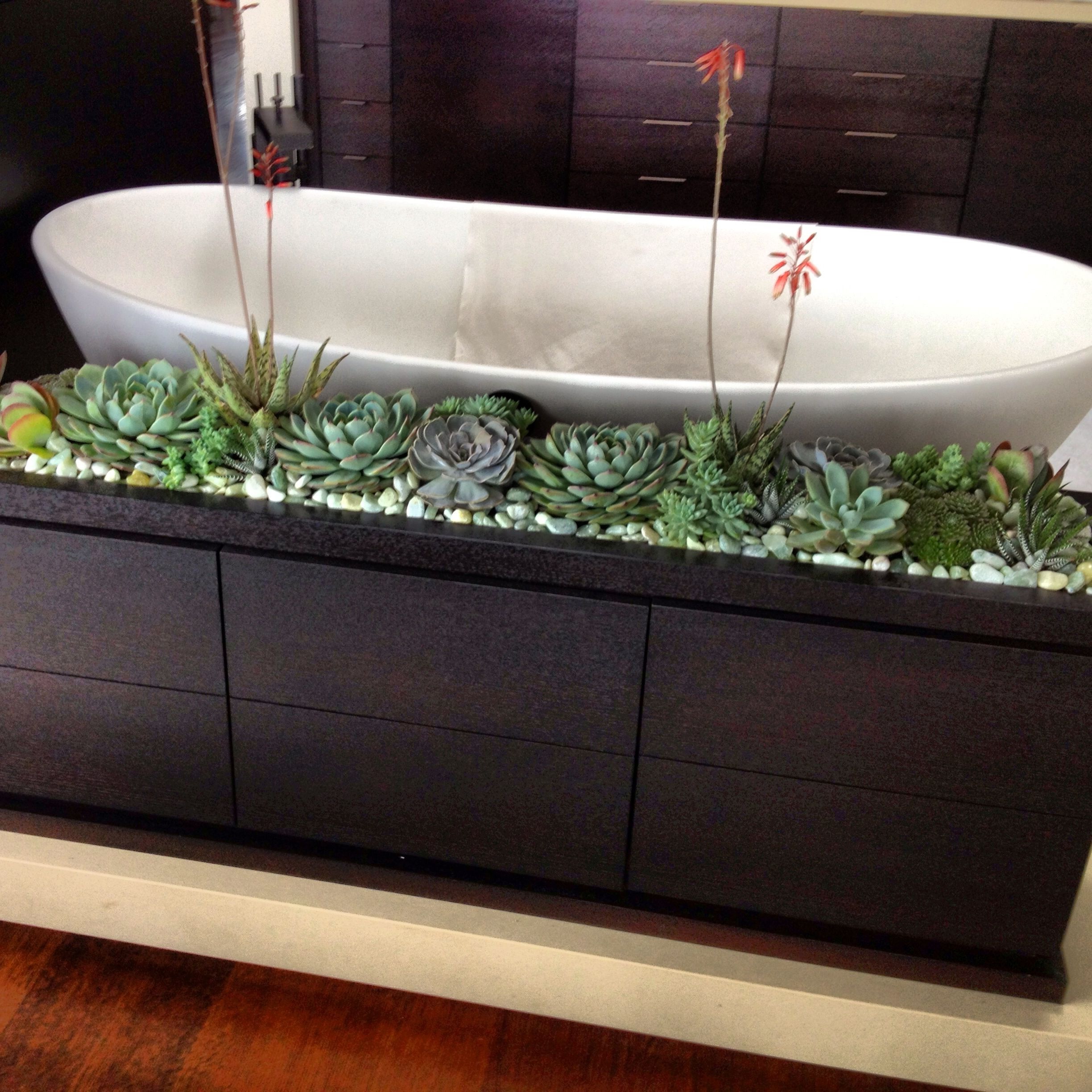 Succulent Planter In A Bathroom Great Idea Thank You Paul Fenner Farmhouse Bathroom Decor Bathroom Decor Bathroom Organization Diy