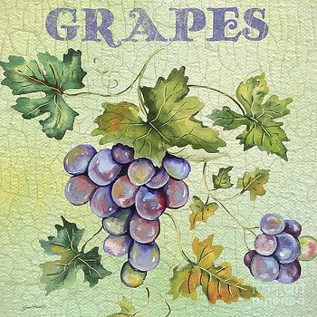 Grapes on Watercolor by Jean Plout