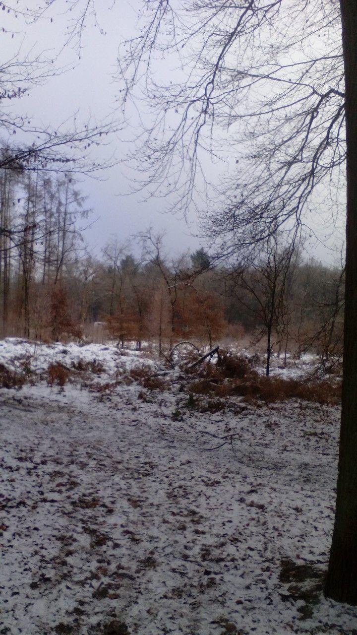 Oud hroevenbeek Ermelo