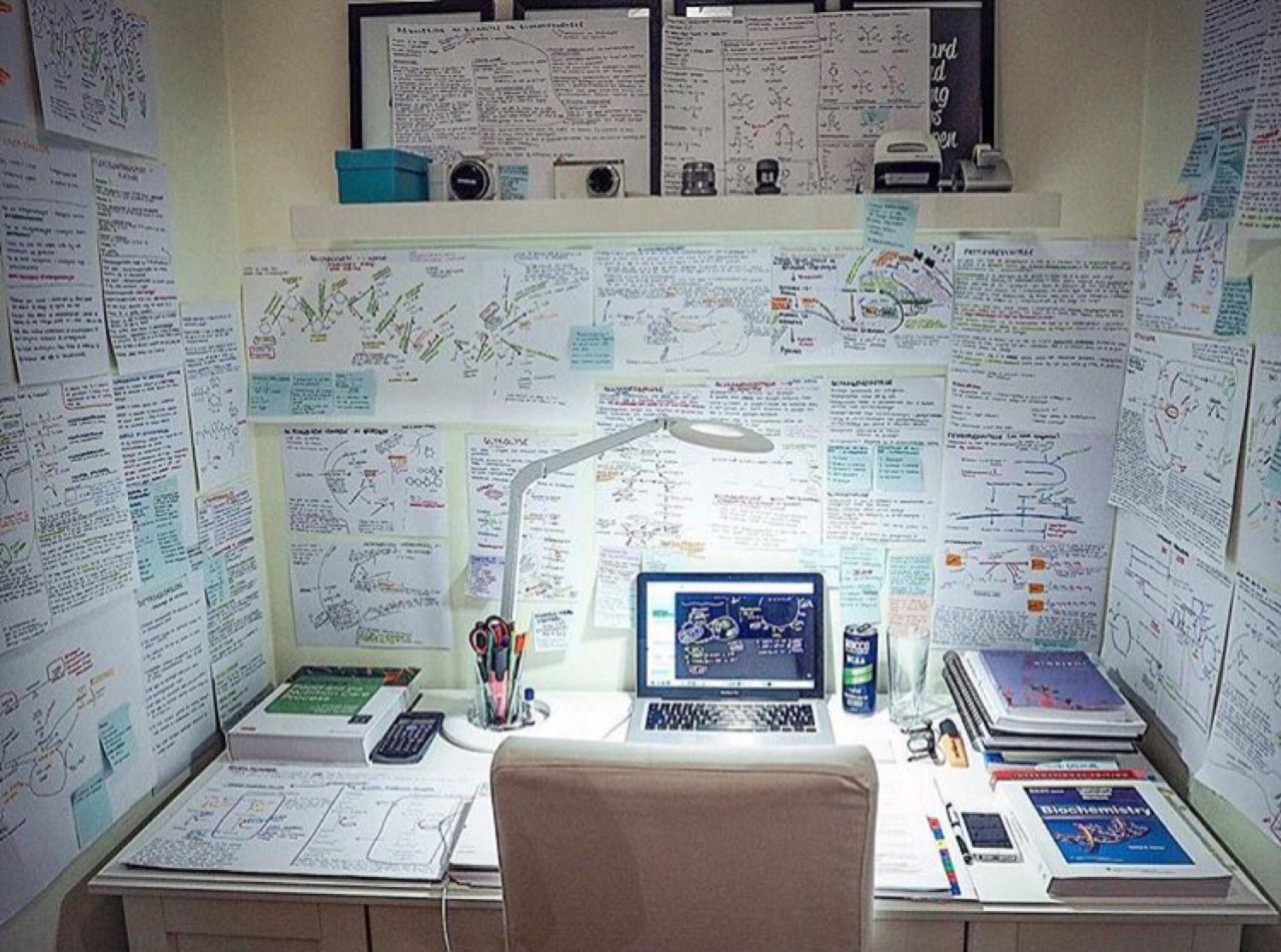 The Organised Student Motiva 231 227 O Para Estudar