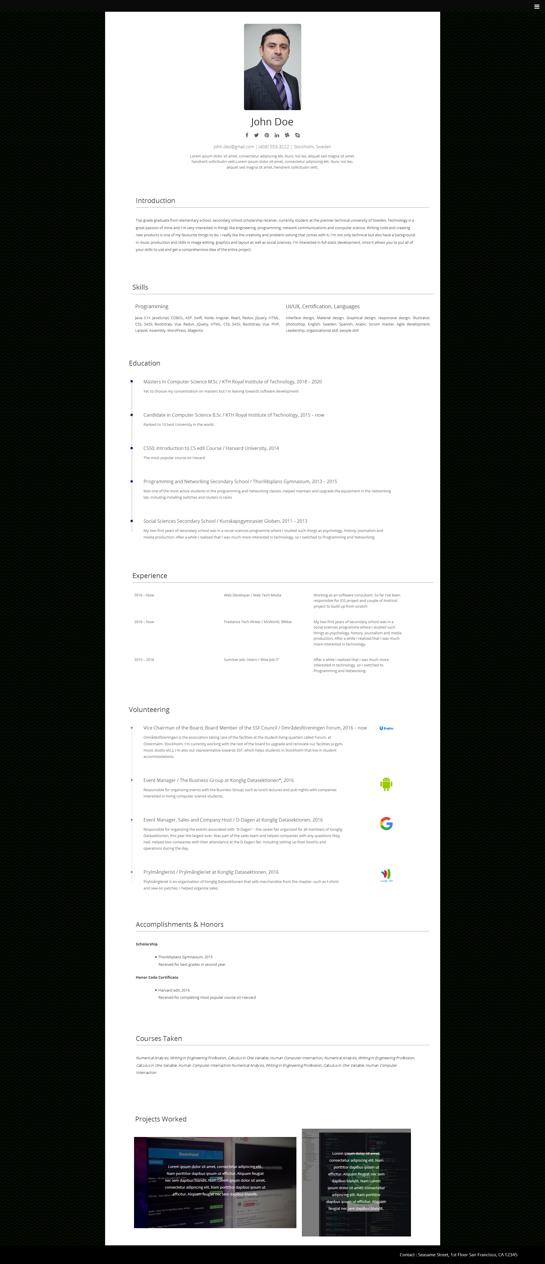 WordPress resume theme Resumee demo Resume, Online