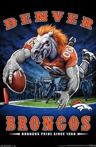 Poster: NFL Denver Broncos - End Zone 17, 22x15in.
