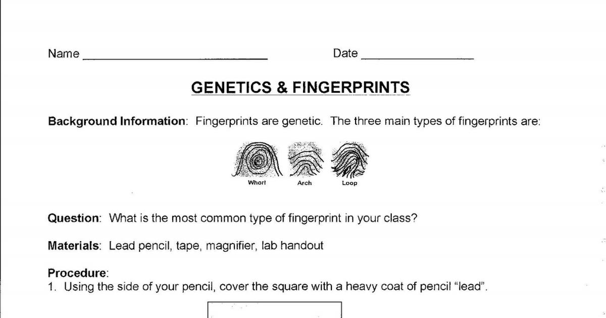 Genetics & Fingerprints Lab .pdf | Genetics activities ...