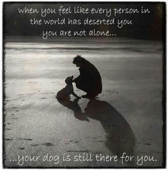 A Dog Will Always Be There For You With Images I Love Dogs