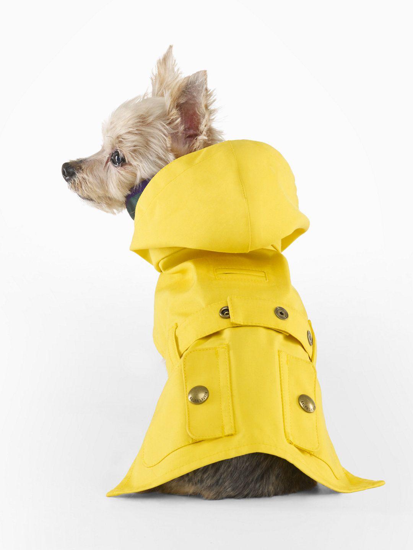 Ralph Lauren Shop Clothing For Men Women Children Babies Dog Coats Dog Sweaters Dog Coats And Sweaters [ 1440 x 1080 Pixel ]