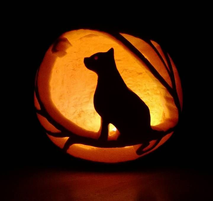 Cat pumpkin carving festivities pinterest cat Cat pumpkin carving patterns