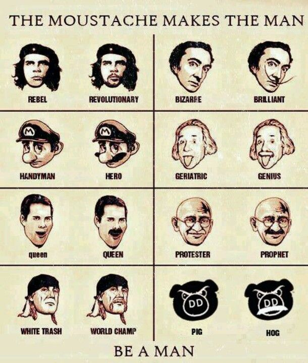 MuStAcHE #humor #creatividad
