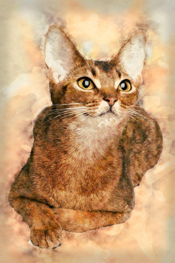 abyssinian cat painting orange cat art pet art abstract cat