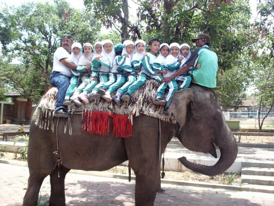 Gambar Kebun Binatang Bandung