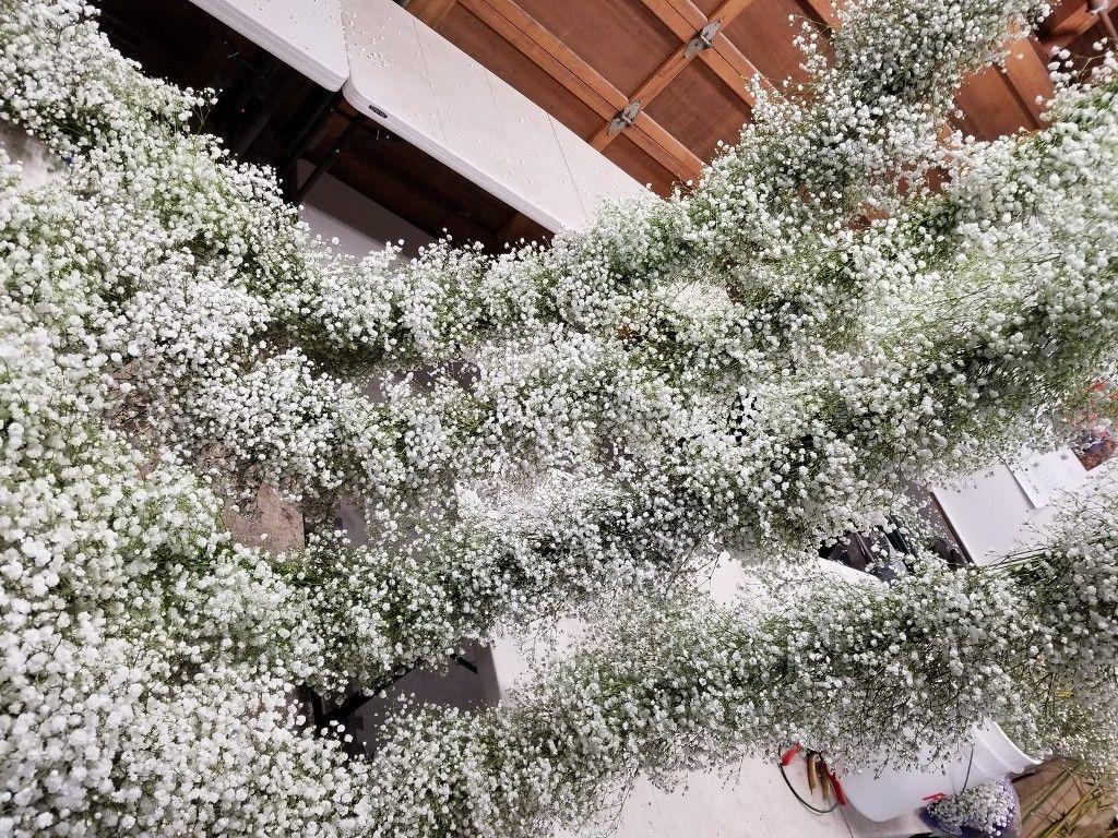 Baby S Breath Garland Flower Wall Wedding Diy Flower Arrangements Wedding Modern Wedding Flowers