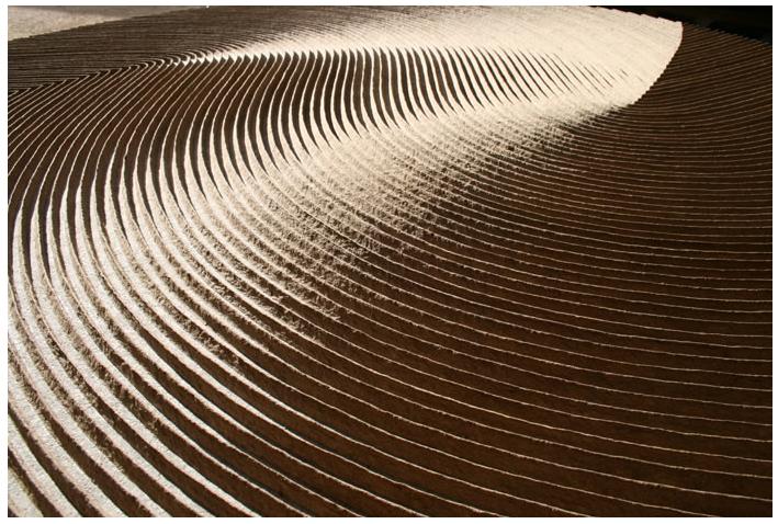 Artist Spotlight Domingos Totora Art From Cardboard Design Cardboard Art Objects Design