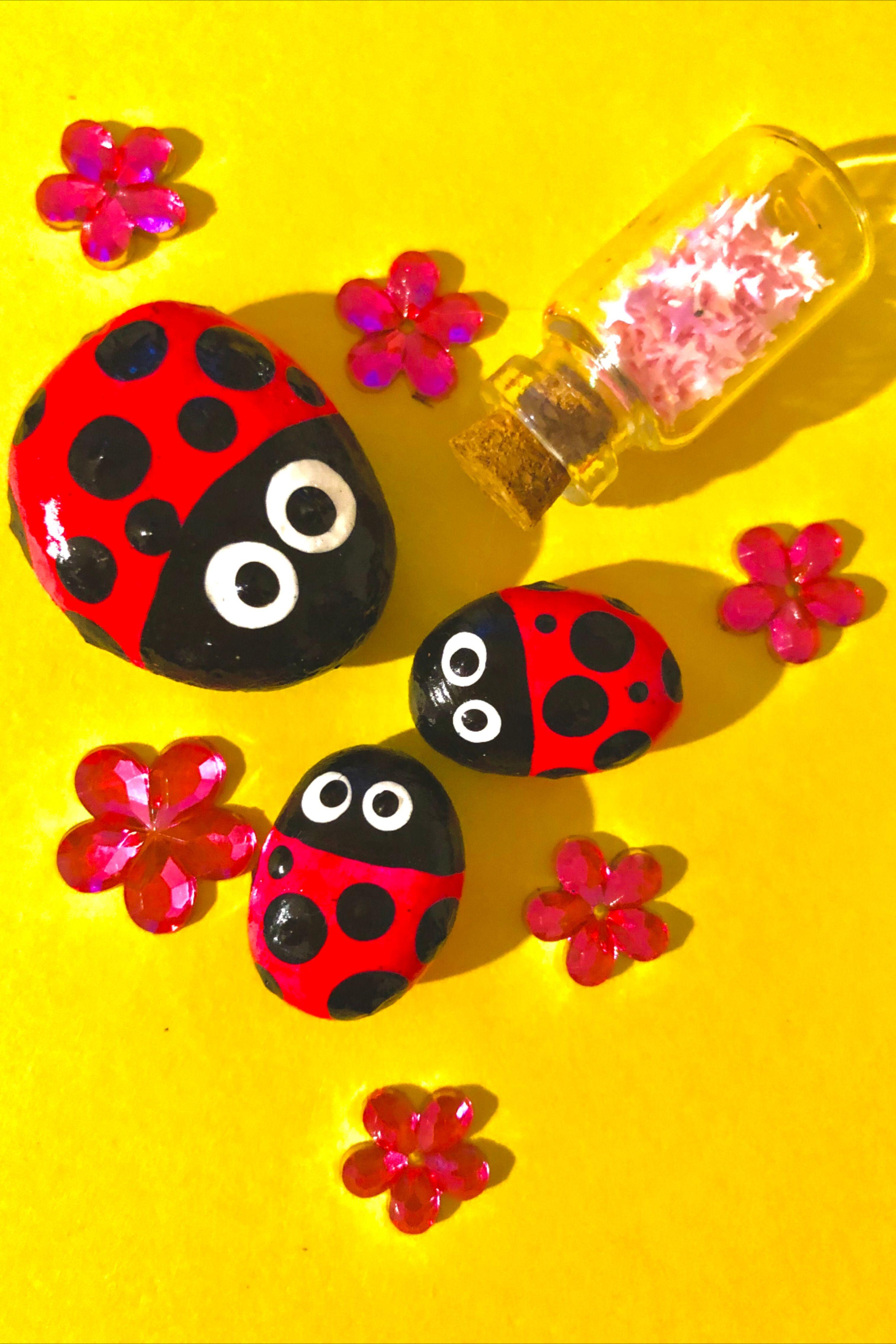 #ladybugs#stoneart#pebbles#pebbleart#dotting#uniquegift#gift#art#uniqueart#artphotography#bohodecoration#gardendecoration#artwork#handpaintedrocks#paintedrocksideas#art#diy#mandalalovers#artlovers