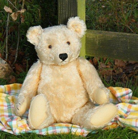 fabulous large steiff bear for sale on our website medo pinterest. Black Bedroom Furniture Sets. Home Design Ideas
