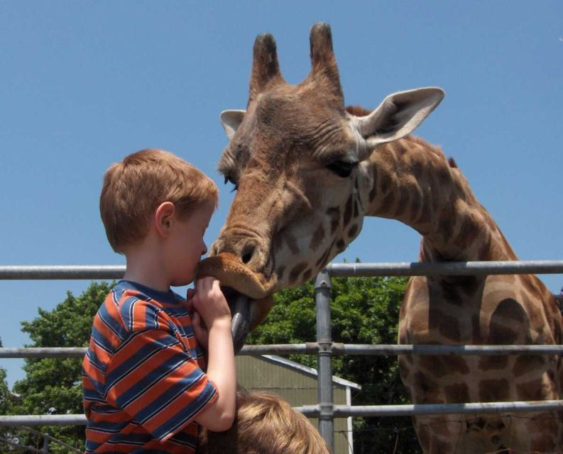At the Long Island Game Farm in Manorville, kids can bottle-feed baby animals, hand-feed a giraffe and see kangaroos, buffalo, ostriches and zebras; $17.45; $15.45 ages 3-11; 631-878-6644; Long Island Game Farm.