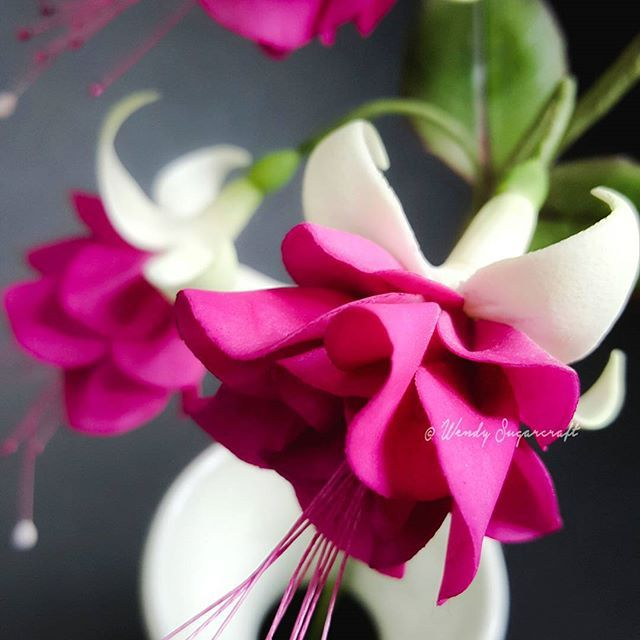 ALSO IN OTHER  COLOURS HAND MADE SUGAR ORCHIDS TRAILING TWO SPRAYS IN WHITE