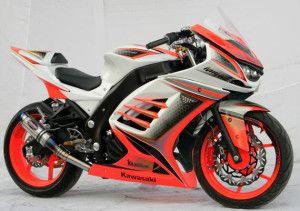 Kawasaki Ninja 250 Sport Modification