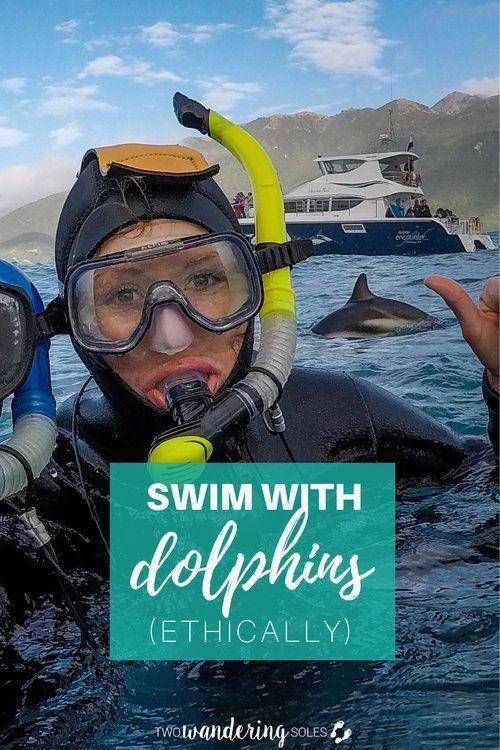 Outdoor swim enthusiast travels to New Zealand to swim
