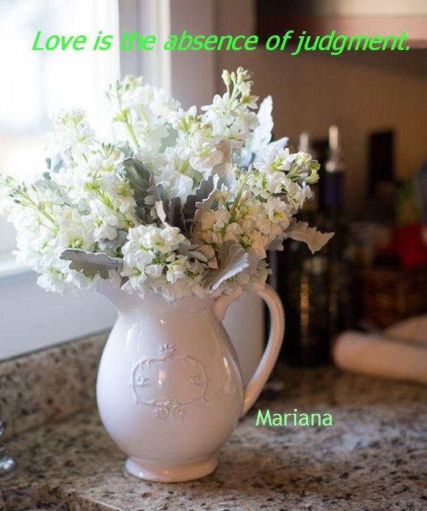 Love Is Quotes Vases And Flowers Pinterest